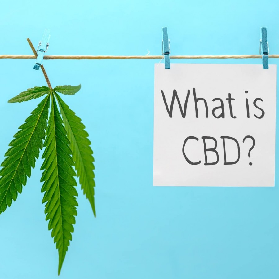 What is CBD in Cannabis?